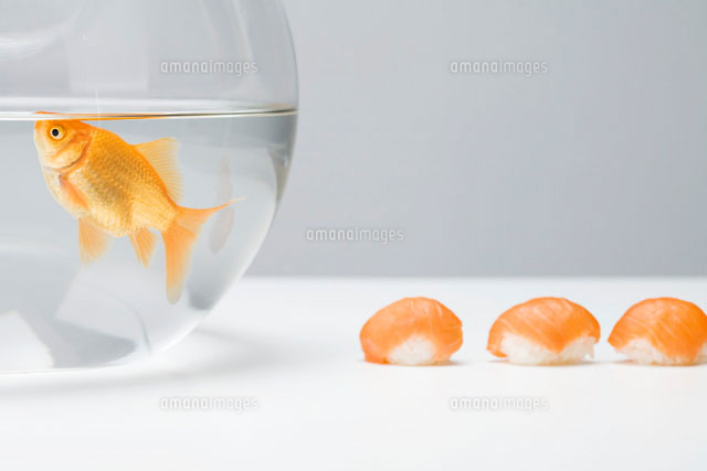 Goldfish swimming in fishbowl