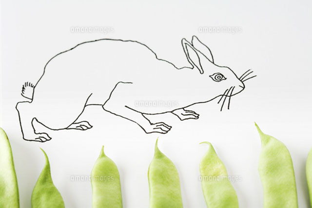 Drawing of rabbit walking on fresh pea pods