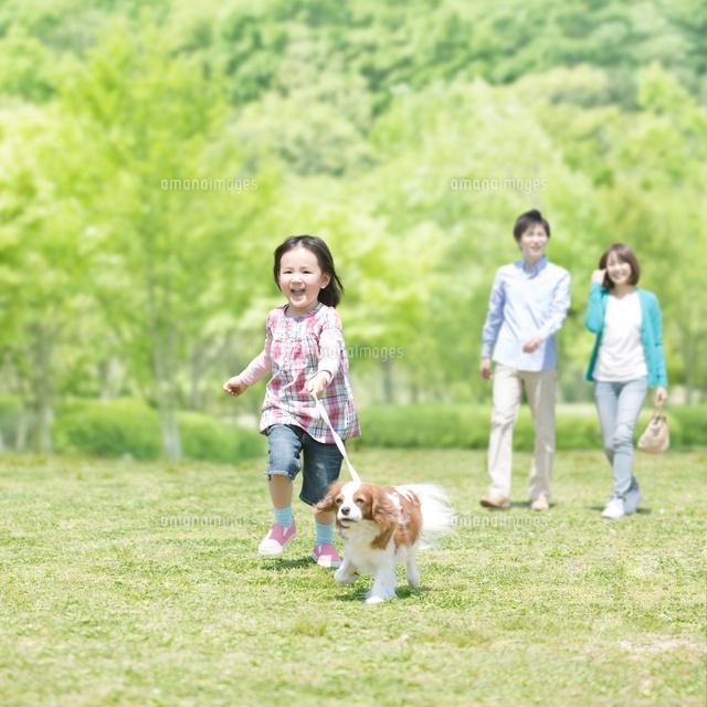 散歩する家族と犬[11004094496]...