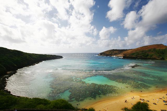 coral reef on tropical beach waikiki hawaii united states
