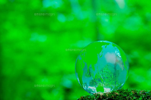 エコロジーイメージ 森林に緑の...