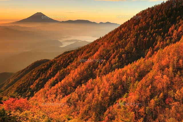 櫛形山より朝日差す紅葉と富士山...