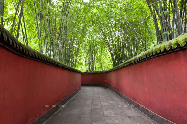 view along walkway with red walls through bamboo forest 11093023388