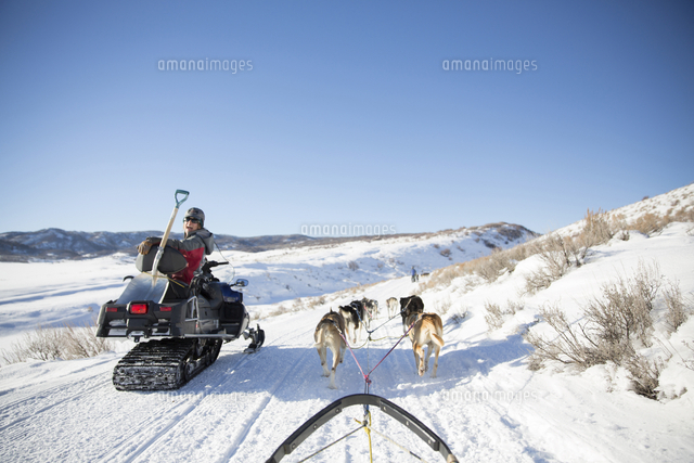 cheerful woman snowmobiling while sled dogs pulling sleigh