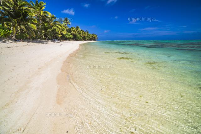 beach at titikaveka rarotonga cook islands 11104010512 写真素材