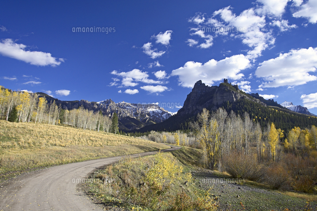 dirt mountain road with aspens and cottonwoods in fall color near