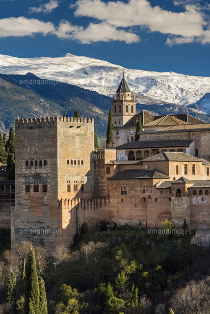 alhambra palace with the snowy sierra nevada in the background