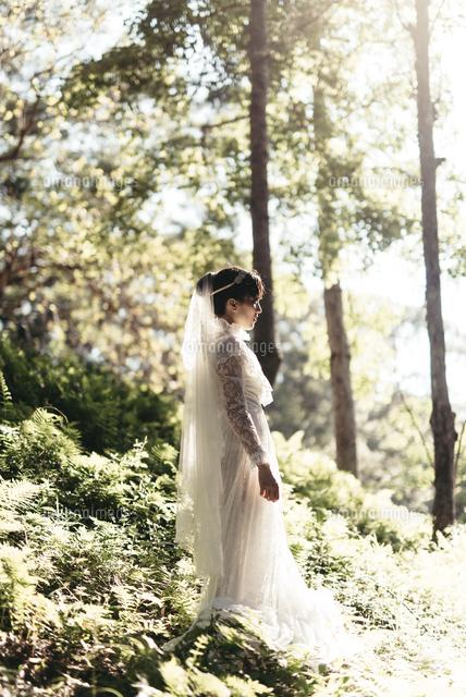 作品番号:11115002901 作品タイトル:Side View Of Bride Standing Amidst Plants In Forest