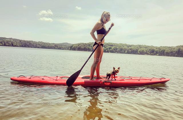 作品番号:11115006387 作品タイトル:Woman Paddleboarding With Dog