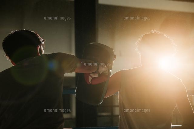 作品番号:11115062439 作品タイトル:Two People On Box Training