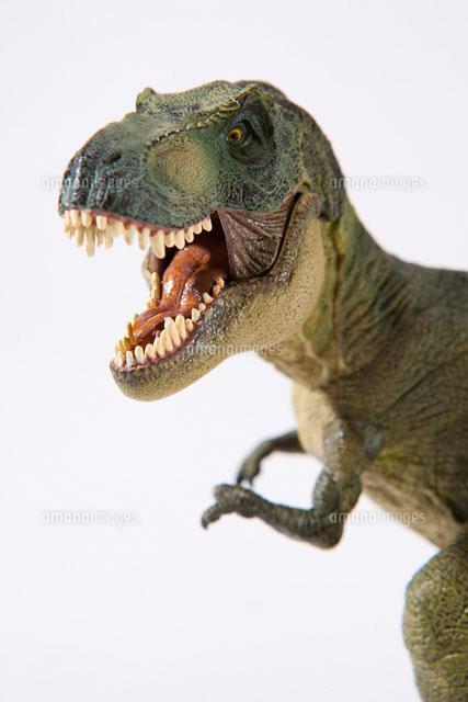 白バックの恐竜ティラノサウルス[28056001025]| 写真素材・ストックフォト・画像・イラスト素材|アマナイメージズ