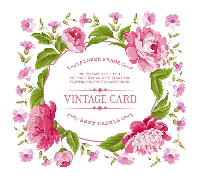 vintage floral card for your invitation template vector