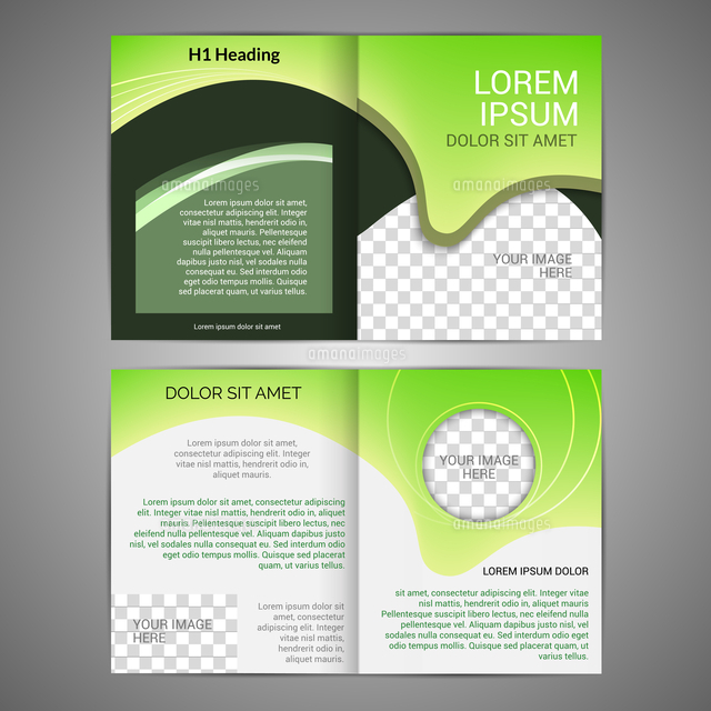 green abstract design paper brochure leaflet design back and front