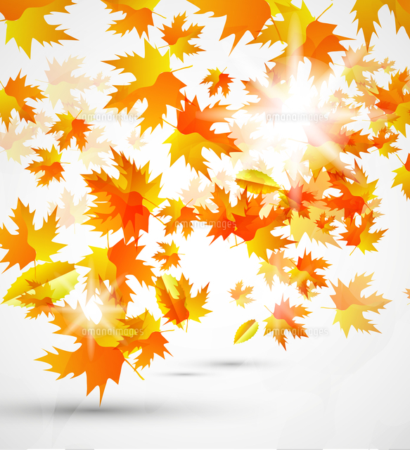 abstract vector autumn background 60016009846 写真素材 ストック