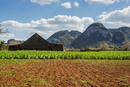 Agricultural field and farm building with mountain landscape, Vinales, Cuba