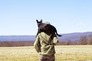 Rear view of man carrying dog on shoulders while standing at field against blue sky