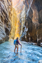 Hiker standing in river, Zion Narrows, narrow of the Virgin