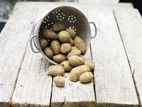 Still life of Jersey Royal Potatoes in colander on wooden table 11015264719| 写真素材・ストックフォト・画像・イラスト素材|アマナイメージズ