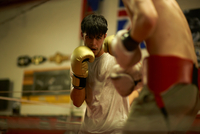 Two boxers sparring in boxing ring 11015289014| 写真素材・ストックフォト・画像・イラスト素材|アマナイメージズ