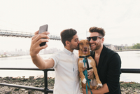 Young male couple on riverside taking smartphone selfie with dog, Astoria, New York, USA 11015302067| 写真素材・ストックフォト・画像・イラスト素材|アマナイメージズ