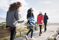 Rear view of young adult friends strolling along beach boardwalk reading smartphones, Western Cape, South Africa 11015302589| 写真素材・ストックフォト・画像・イラスト素材|アマナイメージズ