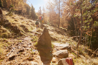 Family hiking, rear view, Schnalstal, South Tyrol, Italy 11015303016| 写真素材・ストックフォト・画像・イラスト素材|アマナイメージズ