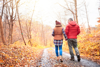 Mature couple walking along rural pathway, in autumn, rear view 11015303778| 写真素材・ストックフォト・画像・イラスト素材|アマナイメージズ