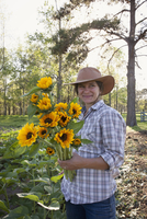Young woman holding bunch of sunflowers (helianthus) from flower farm field 11015312604| 写真素材・ストックフォト・画像・イラスト素材|アマナイメージズ