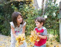 Siblings playing with autumn leaves in garden 11015317513| 写真素材・ストックフォト・画像・イラスト素材|アマナイメージズ