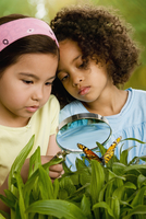 Girls looking at butterfly with magnifying glass 11018077656| 写真素材・ストックフォト・画像・イラスト素材|アマナイメージズ