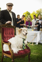 Pampered dog sitting on ornate chair at lawn party 11018081592| 写真素材・ストックフォト・画像・イラスト素材|アマナイメージズ
