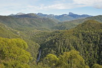 Frenchmans Cap and Franklin River, Franklin-Gordon Wild Rivers National Park, UNESCO World Heritage Area, Tasmania, Australia 11030050072| 写真素材・ストックフォト・画像・イラスト素材|アマナイメージズ