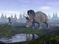 Two Nedoceratops dinosaurs walking to water puddle in the morning light. 11079021977| 写真素材・ストックフォト・画像・イラスト素材|アマナイメージズ