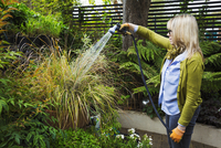 Woman standing in a garden, watering a plant in a pot using a hosepipe with spray attachment. 11093016016| 写真素材・ストックフォト・画像・イラスト素材|アマナイメージズ