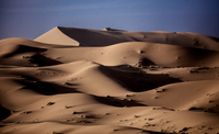 Sand dunes in wave shapes, formed by the action of wind and weather, in the desert. 11093016509| 写真素材・ストックフォト・画像・イラスト素材|アマナイメージズ