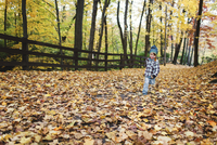 Young boy wearing jeans, checkered shirt and knit hat running along a wooden fence through autumn foliage in a forest. 11093017552| 写真素材・ストックフォト・画像・イラスト素材|アマナイメージズ
