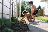 Bare chested young boy and girl standing by a plant bed in a garden, digging in the soil. 11093017724| 写真素材・ストックフォト・画像・イラスト素材|アマナイメージズ