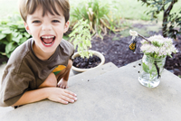 Boy, child next to a flower arrangement on a table with a butterfly hanging from a twig. 11093018452| 写真素材・ストックフォト・画像・イラスト素材|アマナイメージズ