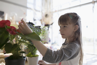 Curious girl touching plants in science center 11096047194| 写真素材・ストックフォト・画像・イラスト素材|アマナイメージズ