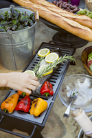 Rosemary, lemons, fresh fish and bell peppers grilling on portable summer barbecue grill 11096054025| 写真素材・ストックフォト・画像・イラスト素材|アマナイメージズ