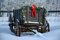 Old- fashioned wooden cart with Christmas decorations standing in snow, Alberta, Canada 11098024035| 写真素材・ストックフォト・画像・イラスト素材|アマナイメージズ