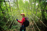 Asian woman traveler with a backpack walking on the bridge jungl 11098085141| 写真素材・ストックフォト・画像・イラスト素材|アマナイメージズ