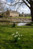 Picturesque Wyck Rissington Village in the Cotswolds 11098088041| 写真素材・ストックフォト・画像・イラスト素材|アマナイメージズ