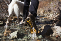 Low section of hiker and dog walking in stream 11100064989| 写真素材・ストックフォト・画像・イラスト素材|アマナイメージズ