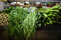 Various vegetables for sale at market 11100065134| 写真素材・ストックフォト・画像・イラスト素材|アマナイメージズ