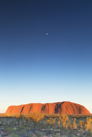 Uluru (UNESCO World Heritage Site) at dawn, Uluru-Kata Tjuta National Park, Northern Territory, Australia 11108000192| 写真素材・ストックフォト・画像・イラスト素材|アマナイメージズ