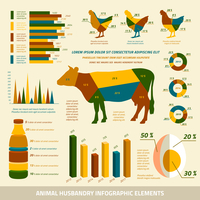 Animal husbandry infographics flat design elements of livestock and chickens vector illustration 60016006003| 写真素材・ストックフォト・画像・イラスト素材|アマナイメージズ