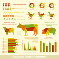 Agriculture infographics flat design elements of livestock chickens and crops vector illustration 60016007119| 写真素材・ストックフォト・画像・イラスト素材|アマナイメージズ