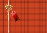 Vector illustration of Scottish plaid gift wrapping with golden ribbon, bow and red empty tag 60016008049| 写真素材・ストックフォト・画像・イラスト素材|アマナイメージズ