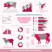 Agriculture infographics flat design elements of livestock chicken cow pig sheep and chart vector illustration 60016029702| 写真素材・ストックフォト・画像・イラスト素材|アマナイメージズ